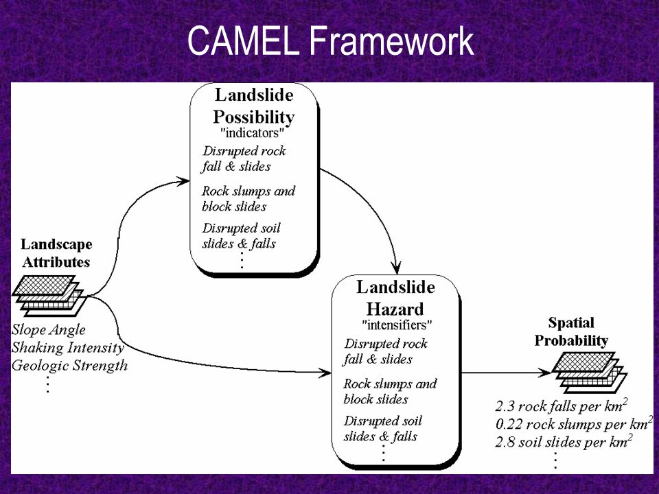 CAMEL Framework
