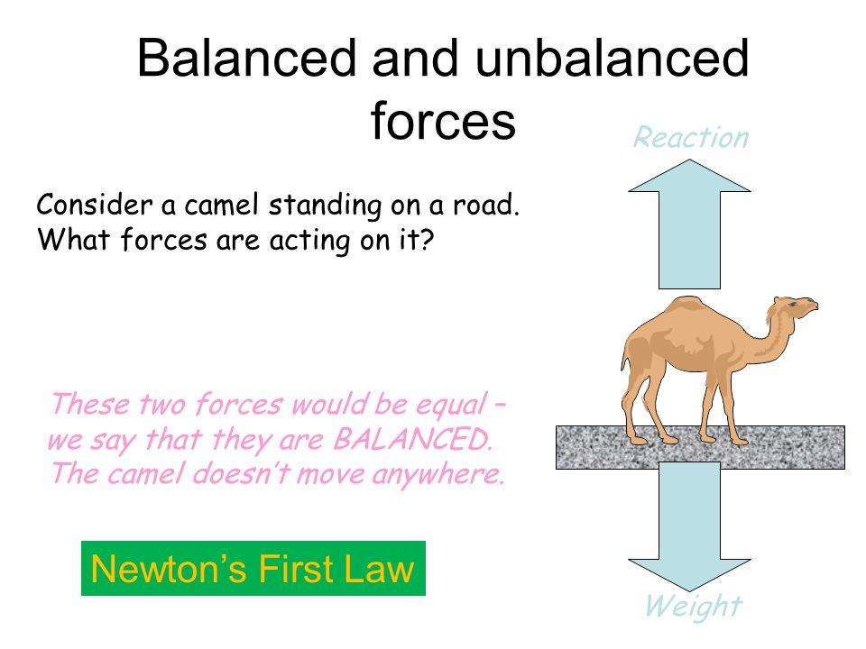 21/04/2015 Some example questions… How much gravitational potential energy have the following objects gained?: 1.A brick that weighs 10N lifted to the top of a house (10m), 2.A 10,000N car lifted by a ramp up to a height of 2m, 3.A 700N person lifted up 50m by a ski lift.