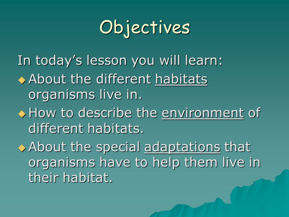 Objectives In today's lesson you will learn:  About the different habitats organisms live in.