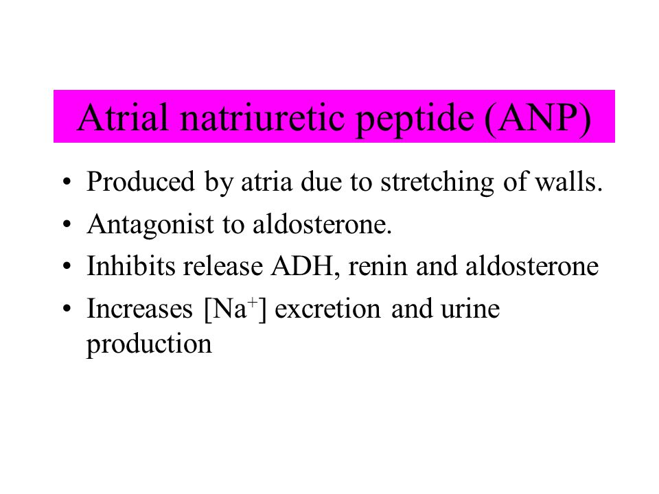 Atrial natriuretic peptide (ANP) Produced by atria due to stretching of walls. Antagonist to aldosterone. Inhibits release ADH, renin and aldosterone