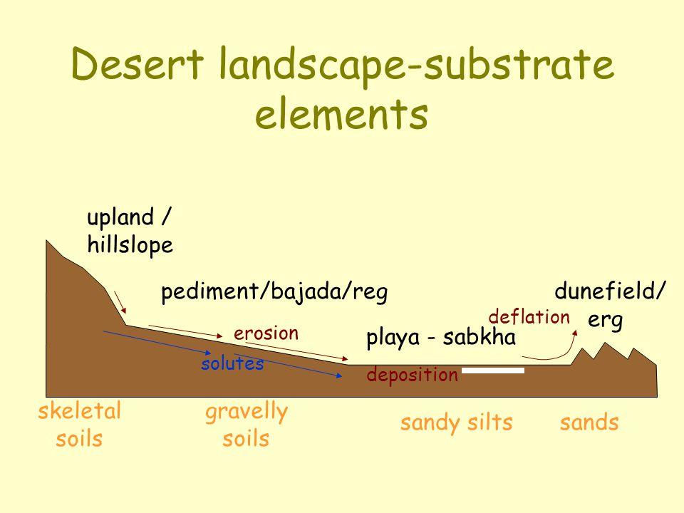 Desert landscape-substrate elements upland / hillslope pediment/bajada/reg playa - sabkha dunefield/ erg erosion deposition deflation solutes skeletal