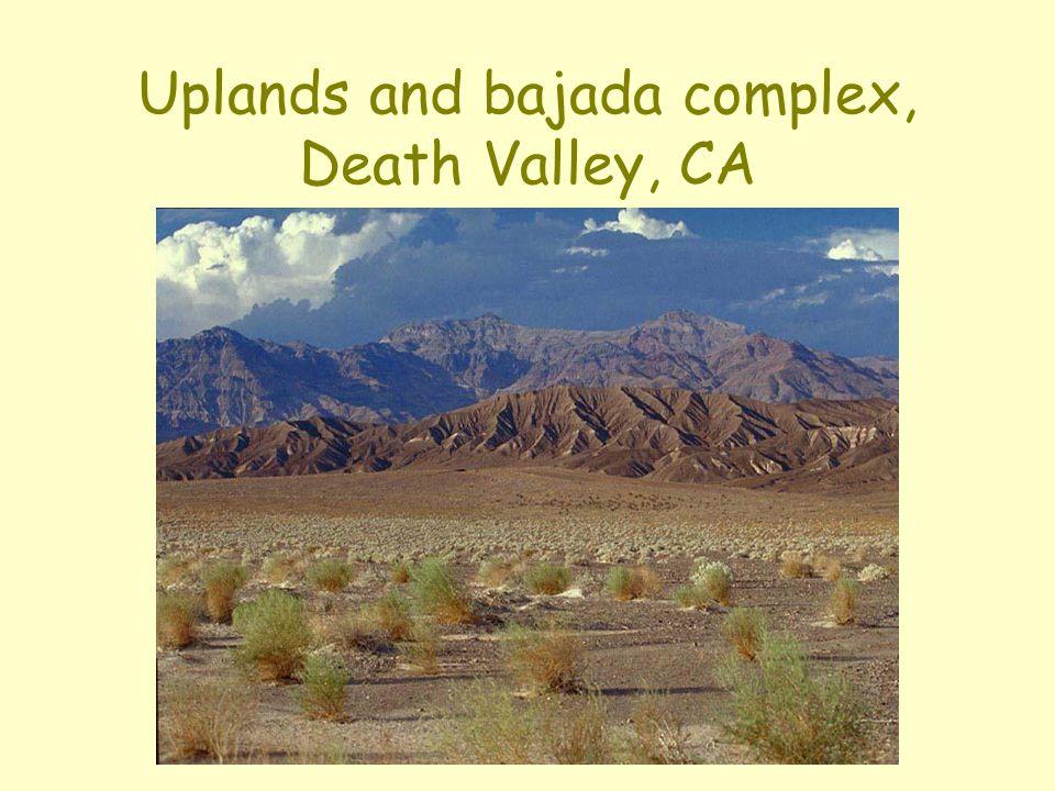 Uplands and bajada complex, Death Valley, CA