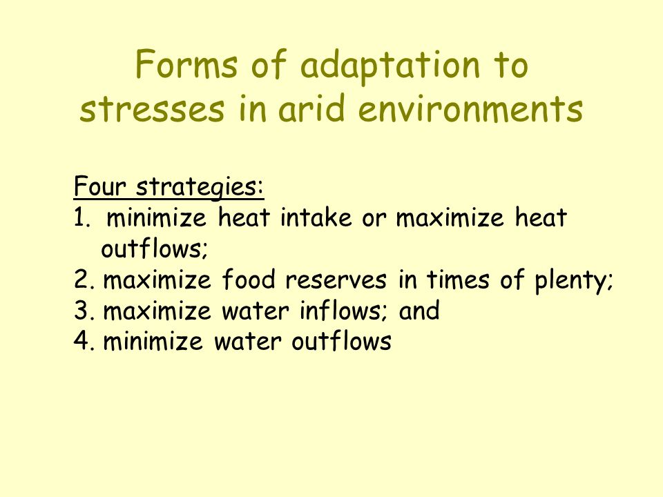Forms of adaptation to stresses in arid environments Four strategies: 1. minimize heat intake or maximize heat outflows; 2. maximize food reserves in