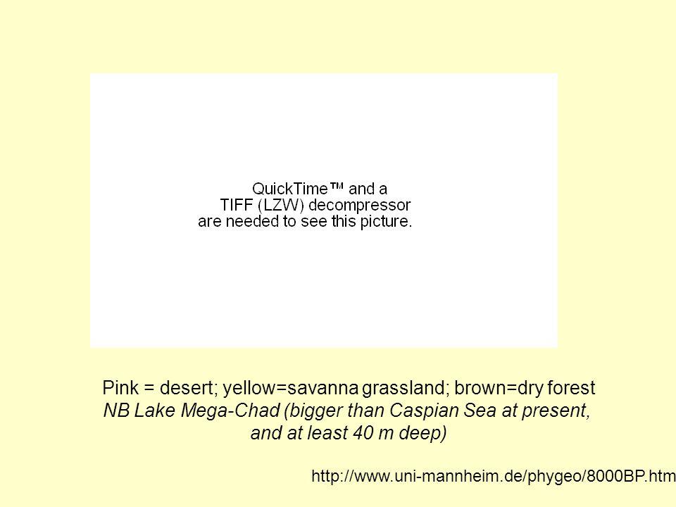http://www.uni-mannheim.de/phygeo/8000BP.htm Pink = desert; yellow=savanna grassland; brown=dry forest NB Lake Mega-Chad (bigger than Caspian Sea at p