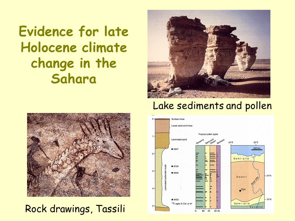 Evidence for late Holocene climate change in the Sahara Lake sediments and pollen Rock drawings, Tassili
