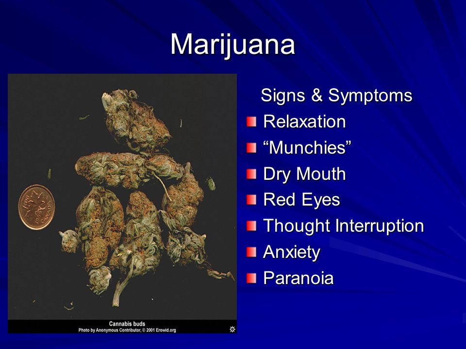 Marijuana Signs & Symptoms Signs & SymptomsRelaxation Munchies Dry Mouth Red Eyes Thought Interruption AnxietyParanoia