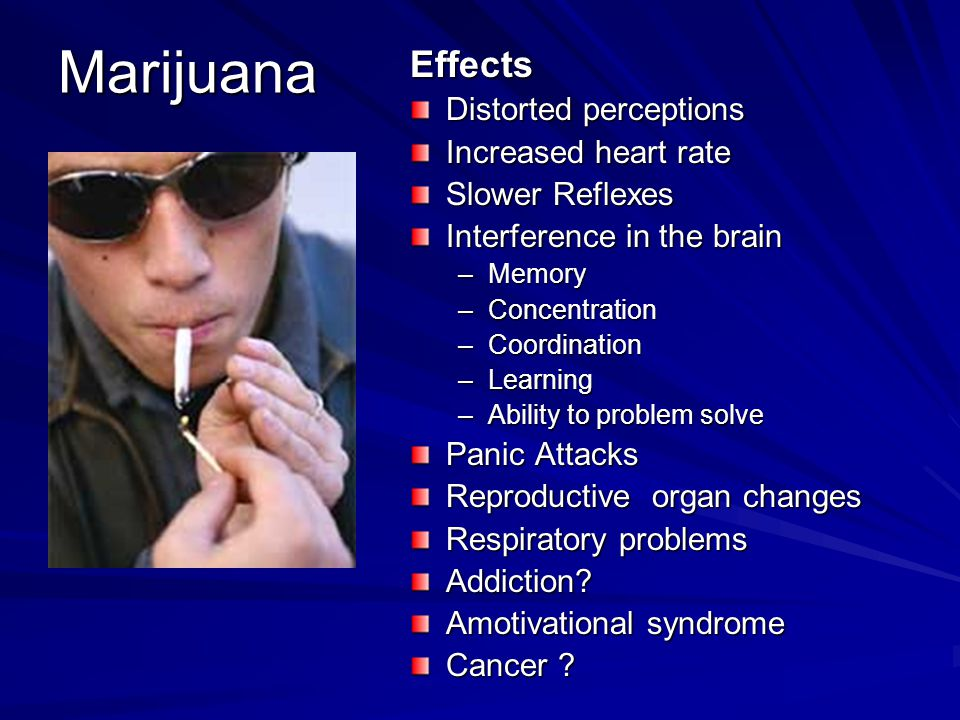 Marijuana Effects Distorted perceptions Increased heart rate Slower Reflexes Interference in the brain –Memory –Concentration –Coordination –Learning –Ability to problem solve Panic Attacks Reproductive organ changes Respiratory problems Addiction.