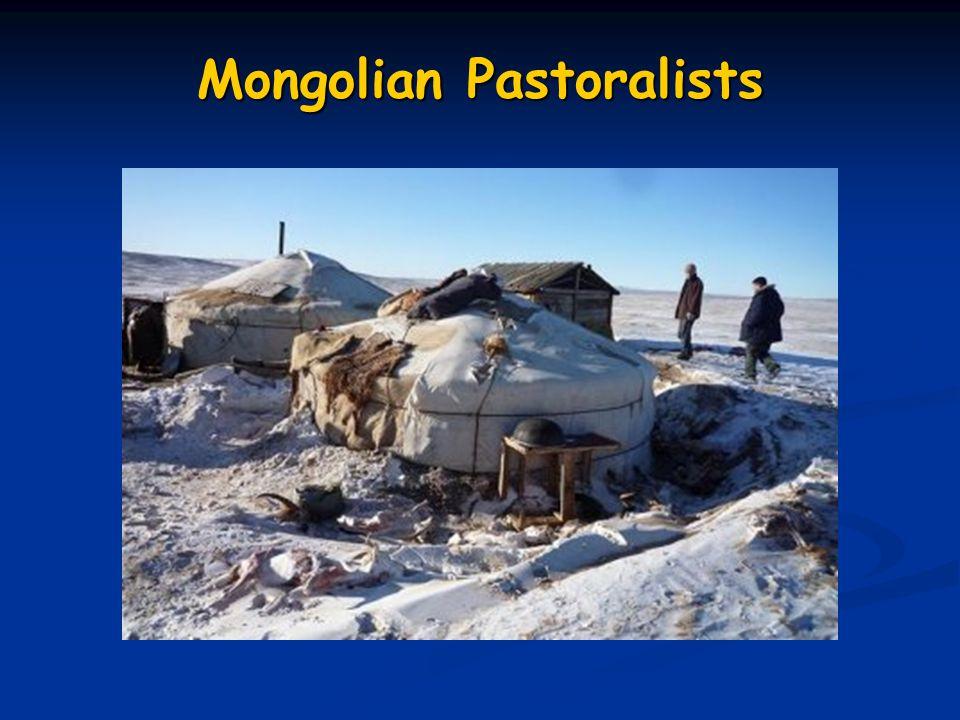 Mongolian Pastoralists