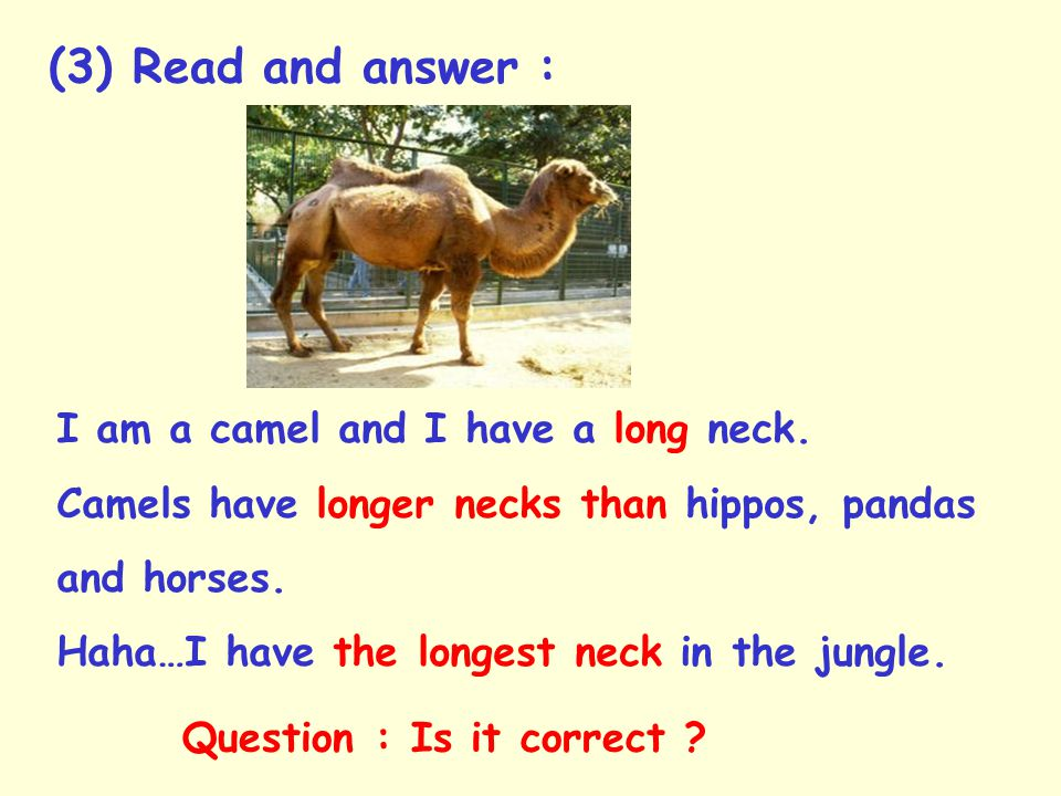 I am a camel and I have a long neck.Camels have longer necks than hippos, pandas and horses.