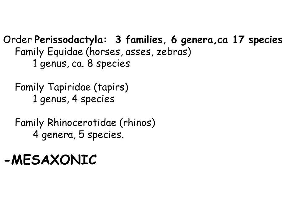 Order Perissodactyla: 3 families, 6 genera,ca 17 species Family Equidae (horses, asses, zebras) 1 genus, ca.