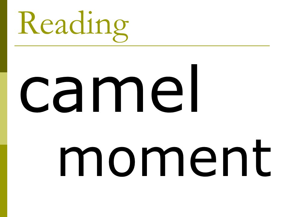 Reading camel moment