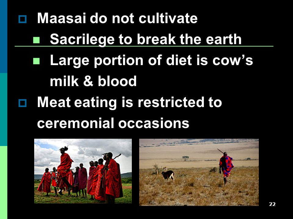 22  Maasai do not cultivate Sacrilege to break the earth Large portion of diet is cow's milk & blood  Meat eating is restricted to ceremonial occasions
