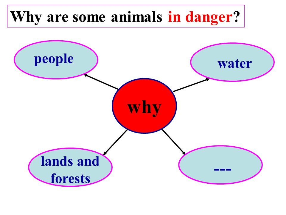 why lands and forests water people ---