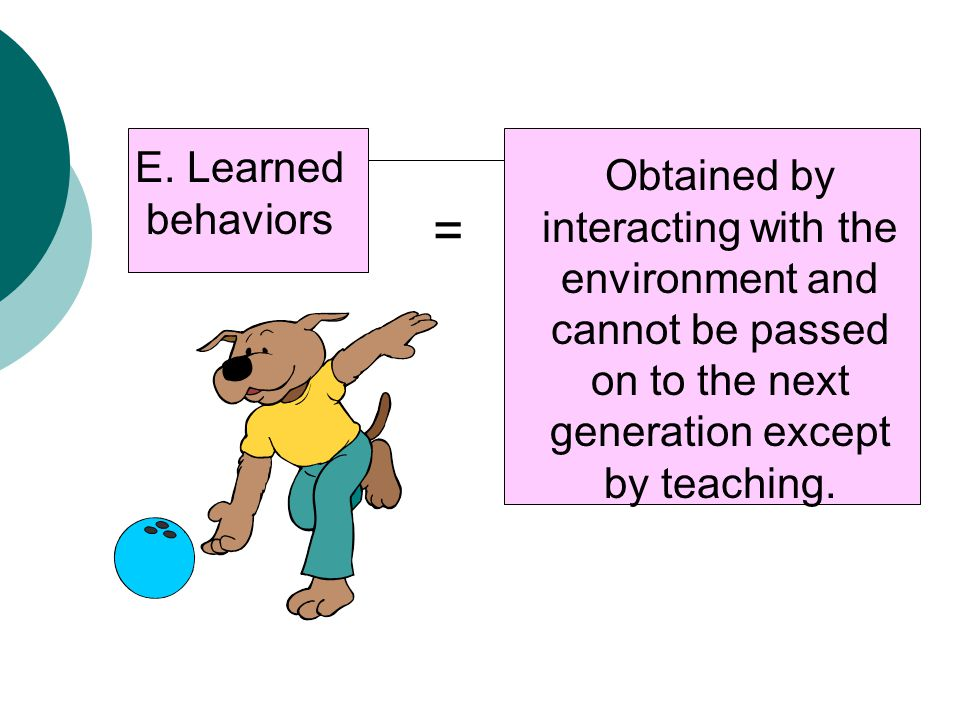 E. Learned behaviors Obtained by interacting with the environment and cannot be passed on to the next generation except by teaching. =
