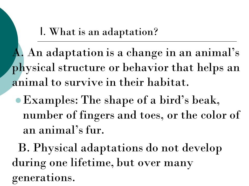 I. What is an adaptation. A.