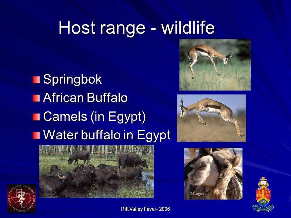Rift Valley Fever- 2006 Host range - wildlife Springbok African Buffalo Camels (in Egypt) Water buffalo in Egypt