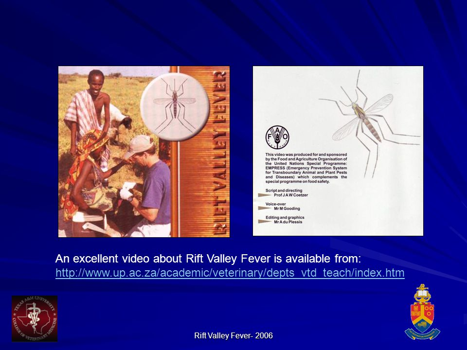 Rift Valley Fever- 2006 An excellent video about Rift Valley Fever is available from: http://www.up.ac.za/academic/veterinary/depts_vtd_teach/index.htm