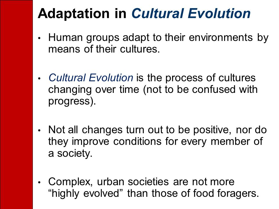 Adaptation in Cultural Evolution Human groups adapt to their environments by means of their cultures.