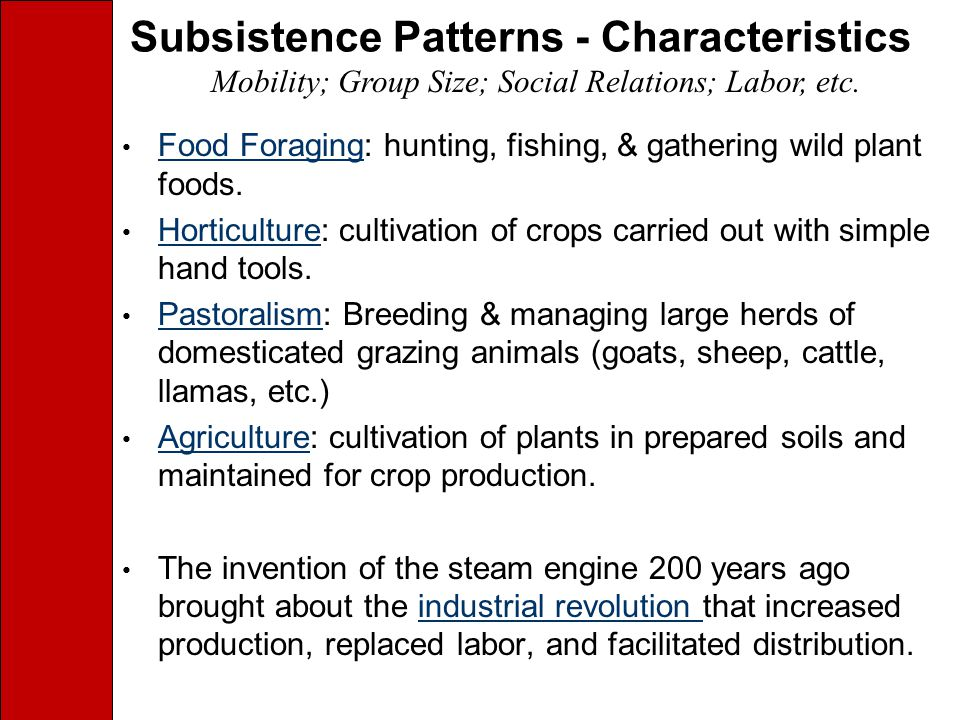 Subsistence Patterns - Characteristics Food Foraging: hunting, fishing, & gathering wild plant foods.