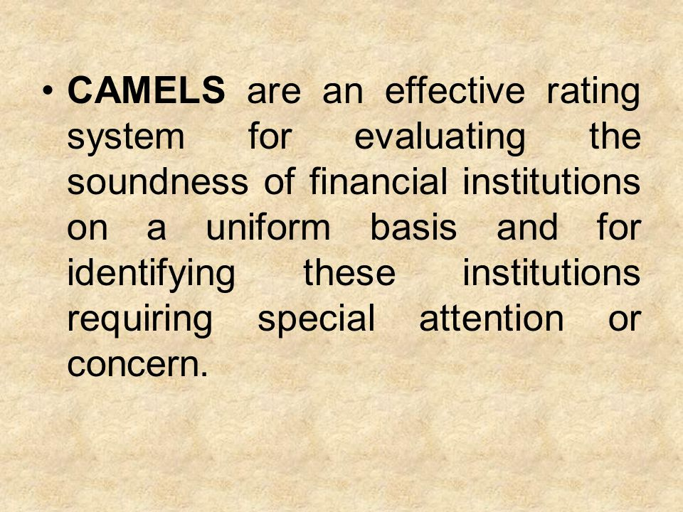 CAMELS are an effective rating system for evaluating the soundness of financial institutions on a uniform basis and for identifying these institutions requiring special attention or concern.