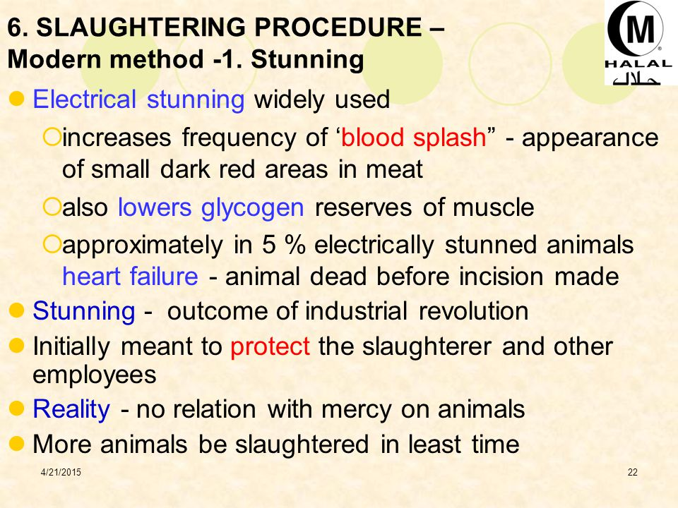 4/21/201522 6.SLAUGHTERING PROCEDURE – Modern method -1.