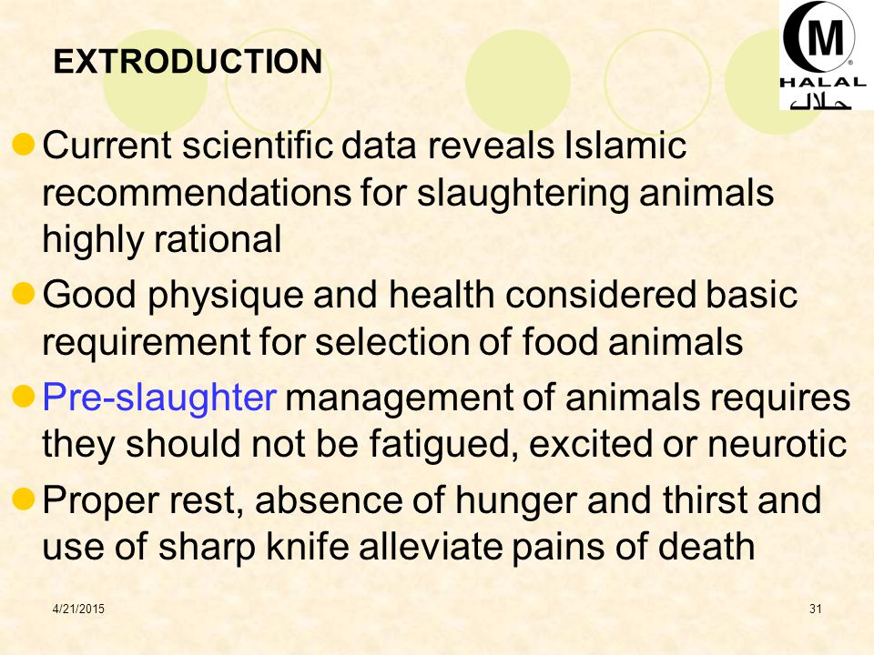 4/21/201531 EXTRODUCTION Current scientific data reveals Islamic recommendations for slaughtering animals highly rational Good physique and health considered basic requirement for selection of food animals Pre-slaughter management of animals requires they should not be fatigued, excited or neurotic Proper rest, absence of hunger and thirst and use of sharp knife alleviate pains of death