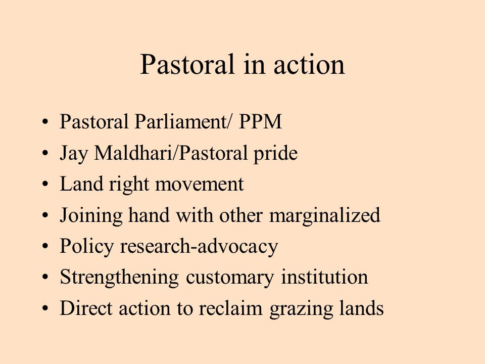 Pastoral in action Pastoral Parliament/ PPM Jay Maldhari/Pastoral pride Land right movement Joining hand with other marginalized Policy research-advocacy Strengthening customary institution Direct action to reclaim grazing lands