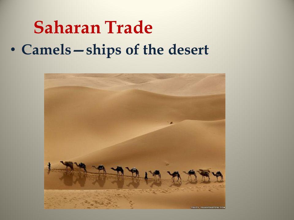 Saharan Trade Camels—ships of the desert