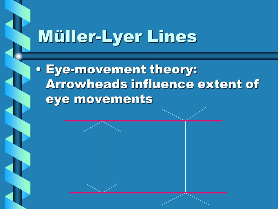 Müller-Lyer Lines Eye-movement theory: Arrowheads influence extent of eye movementsEye-movement theory: Arrowheads influence extent of eye movements