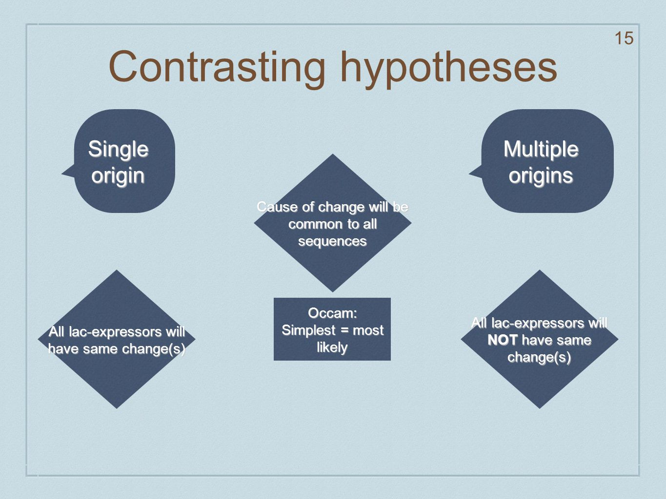Contrasting hypotheses 15 Cause of change will be common to all sequences Occam: Simplest = most likely Single origin All lac-expressors will have sam