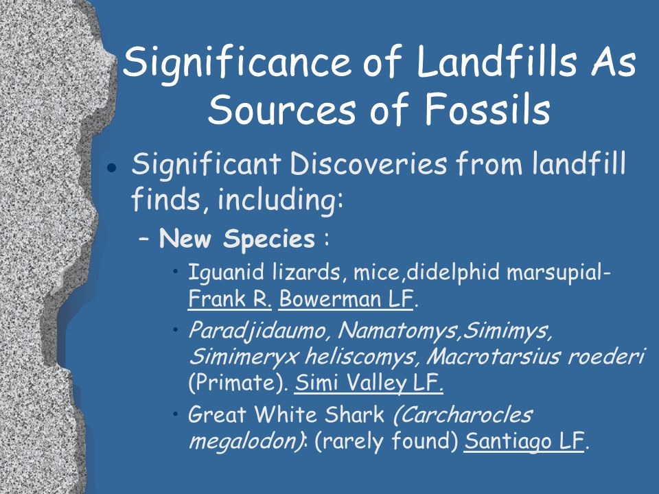 Significance of Landfills As Sources of Fossils l In addition, 15 sites have yielded marine invertebrate assemblages. –Molluscs: Gastropods, Pelecypod