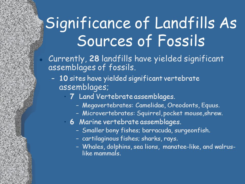Significance of Landfills As Sources of Fossils l Variety of Locations. –188 landfills scattered across the state provide potential for species geogra