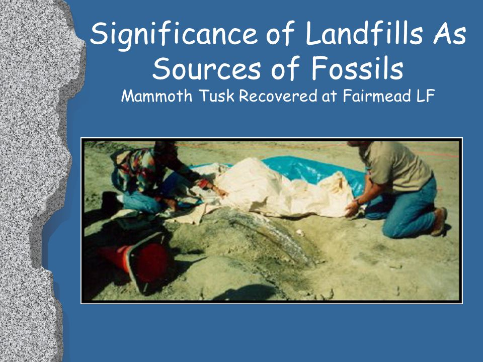Significance of Landfills As Sources of Fossils l These programs and legislation provide protections for paleontological resources: l National Historic Preservation Act (16 USC 470 Et Seq.).