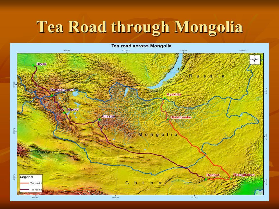 Tea Road through Mongolia