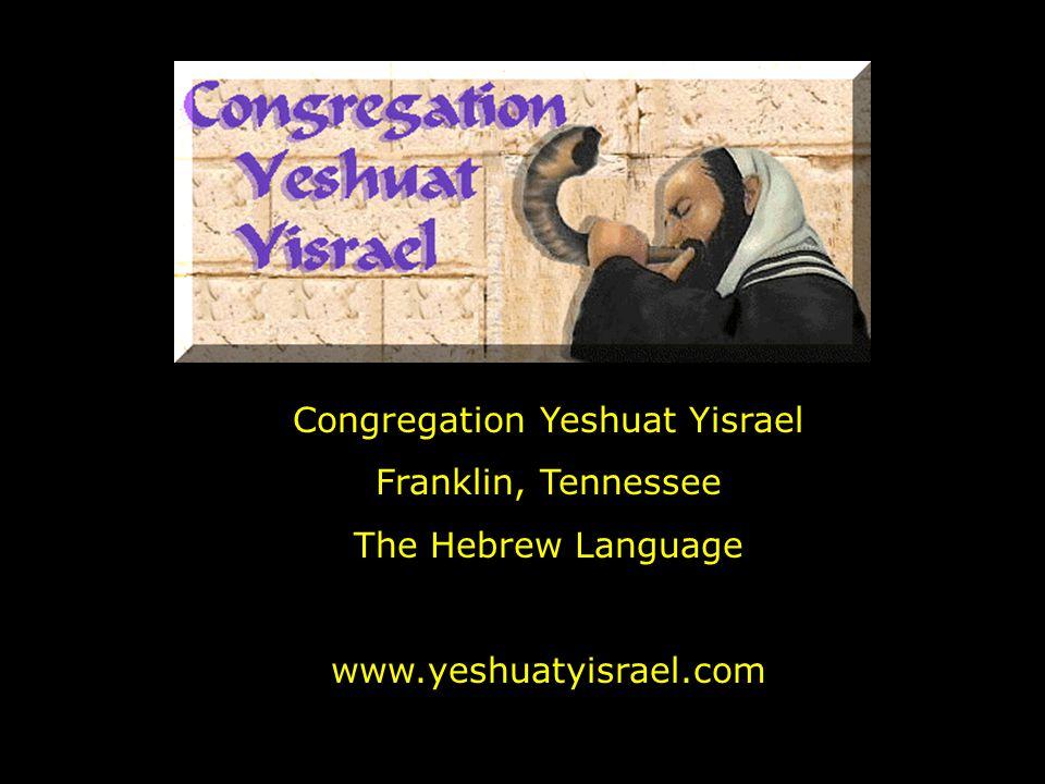 Congregation Yeshuat Yisrael Franklin, Tennessee The Hebrew Language www.yeshuatyisrael.com