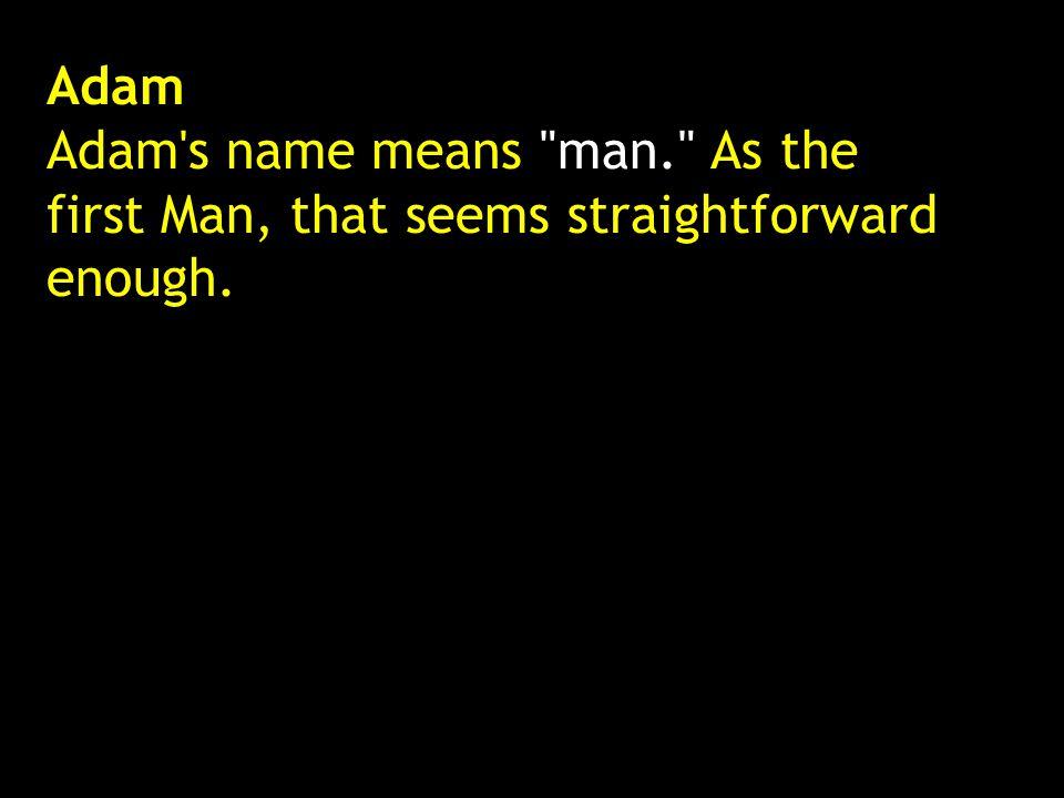 Adam Adam's name means