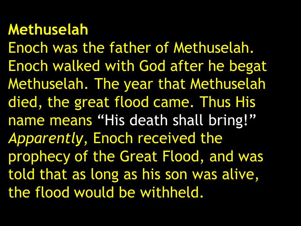 Methuselah Enoch was the father of Methuselah. Enoch walked with God after he begat Methuselah. The year that Methuselah died, the great flood came. T