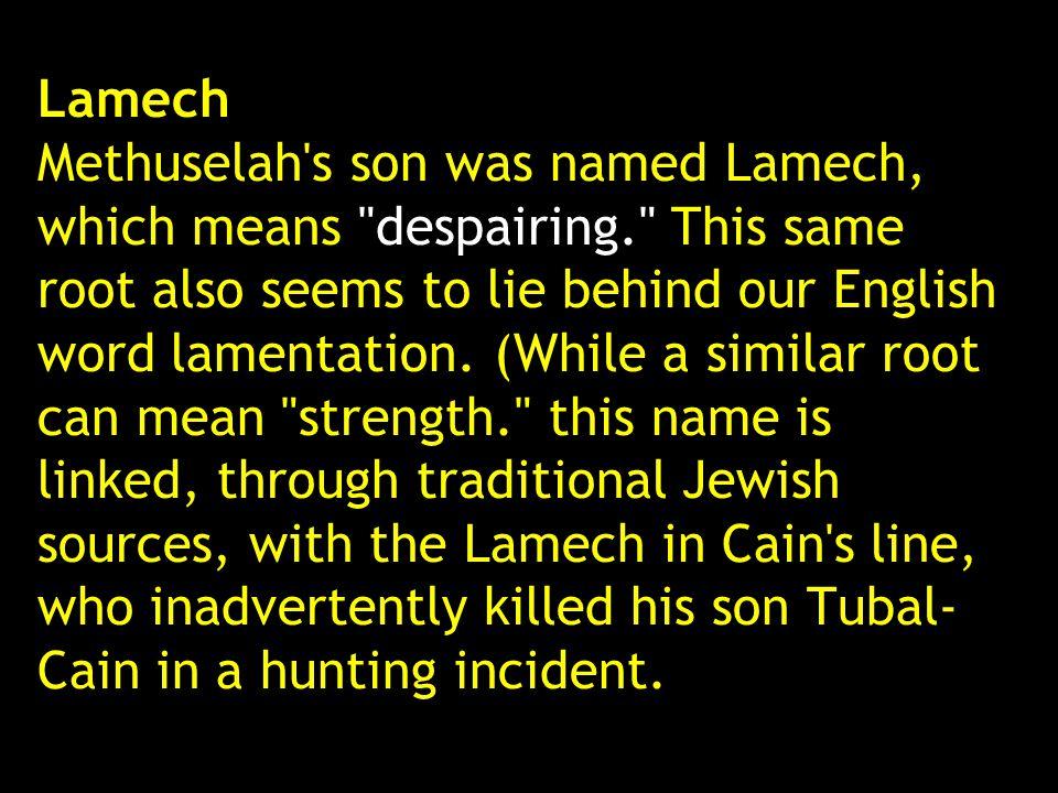 Lamech Methuselah's son was named Lamech, which means
