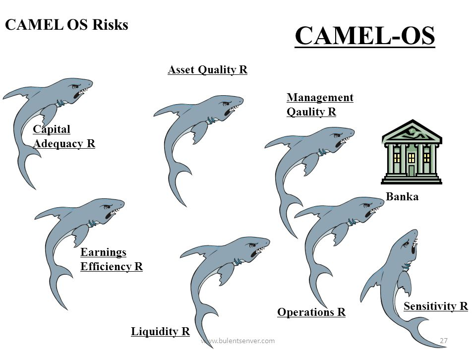 www.bulentsenver.com26 Bank Risk Management in Banks R1 R2 R3 R4 R5 R6 R7