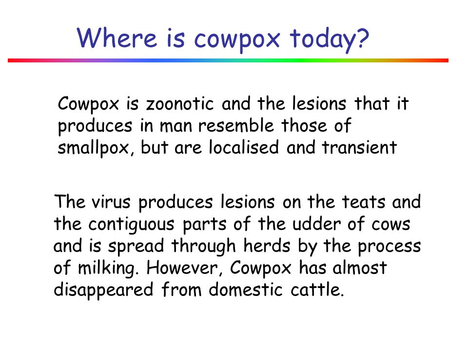 Where is cowpox today.