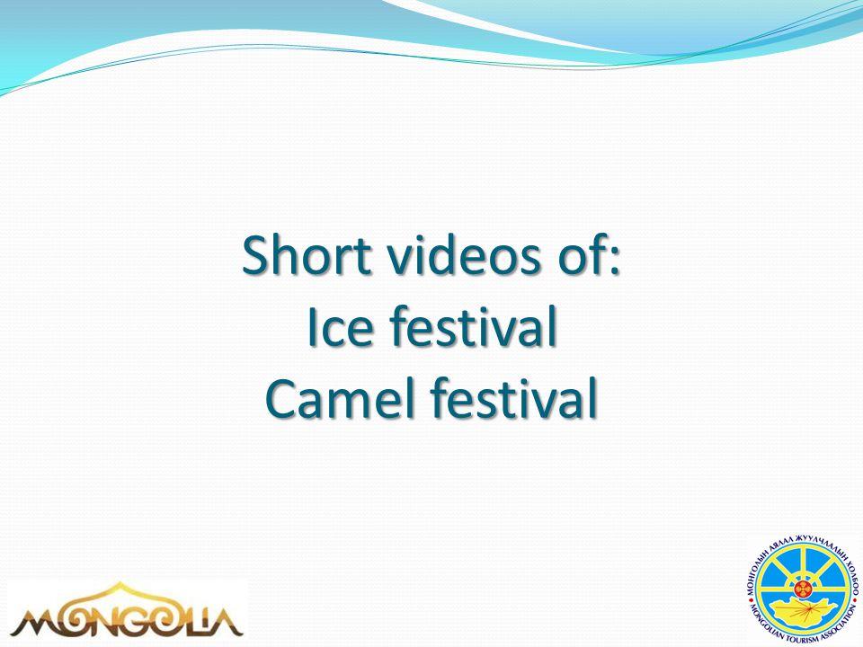 Short videos of: Ice festival Camel festival
