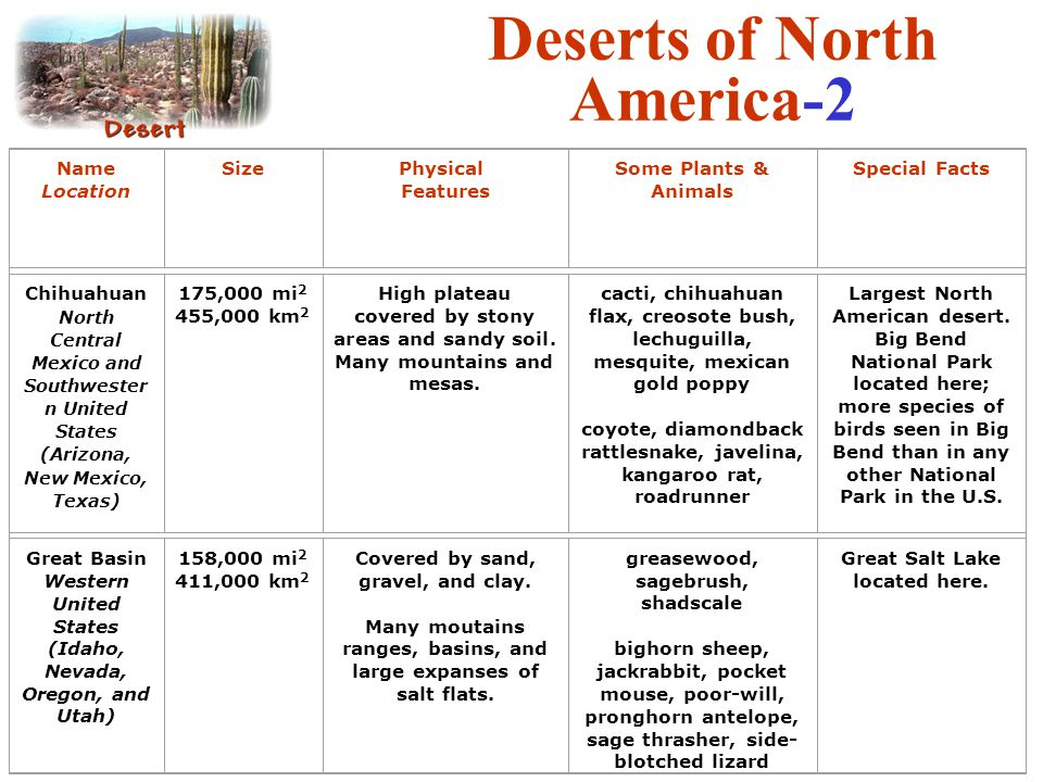 Deserts of North America-2 Name Location SizePhysical Features Some Plants & Animals Special Facts Chihuahuan North Central Mexico and Southwester n U