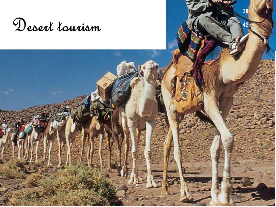 Characteristics of Desert tourism
