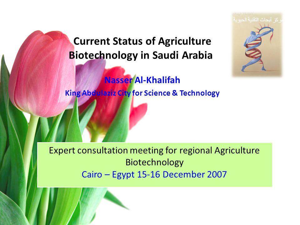 The current Status Research Granted Budget InstitutionTitle 168.000KSU Induced Genetic Mutation in Wheat by Diethyl Sulfate.