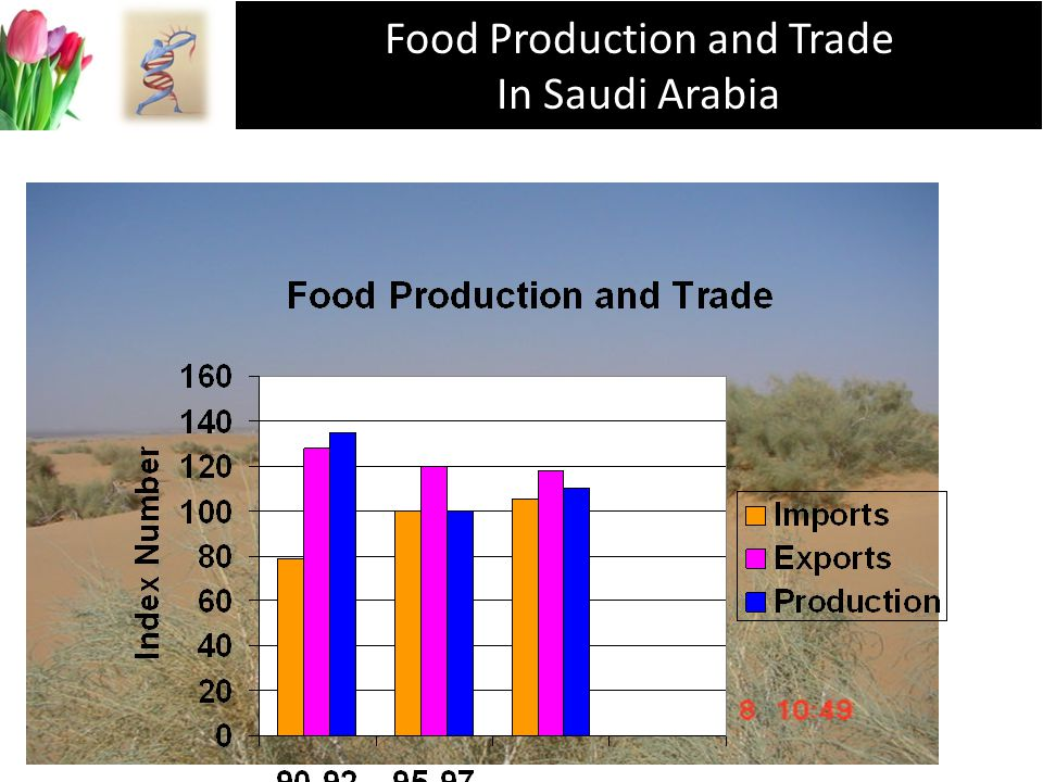 Food Production and Trade In Saudi Arabia