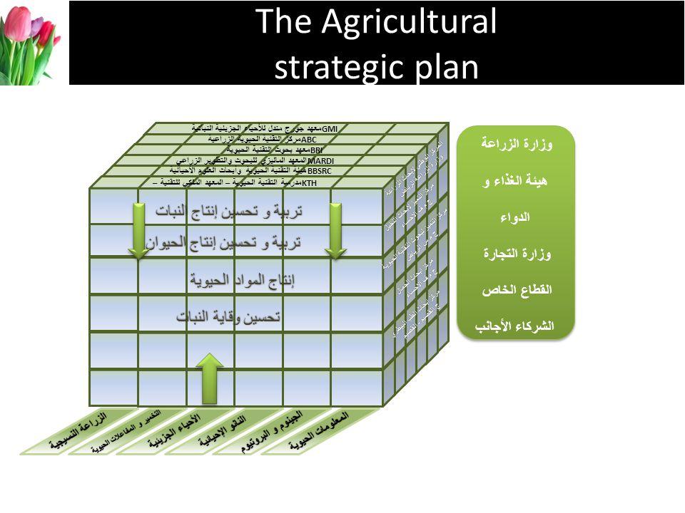 The Agricultural strategic plan تربية و تحسين إنتاج النبات تربية و تحسين إنتاج الحيوان إنتاج المواد الحيوية تحسين وقاية النبات مدرسة التقنية الحيوية –