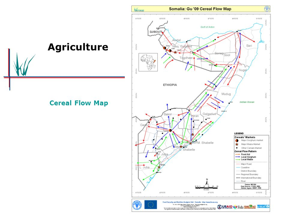 Agriculture Cereal Flow Map