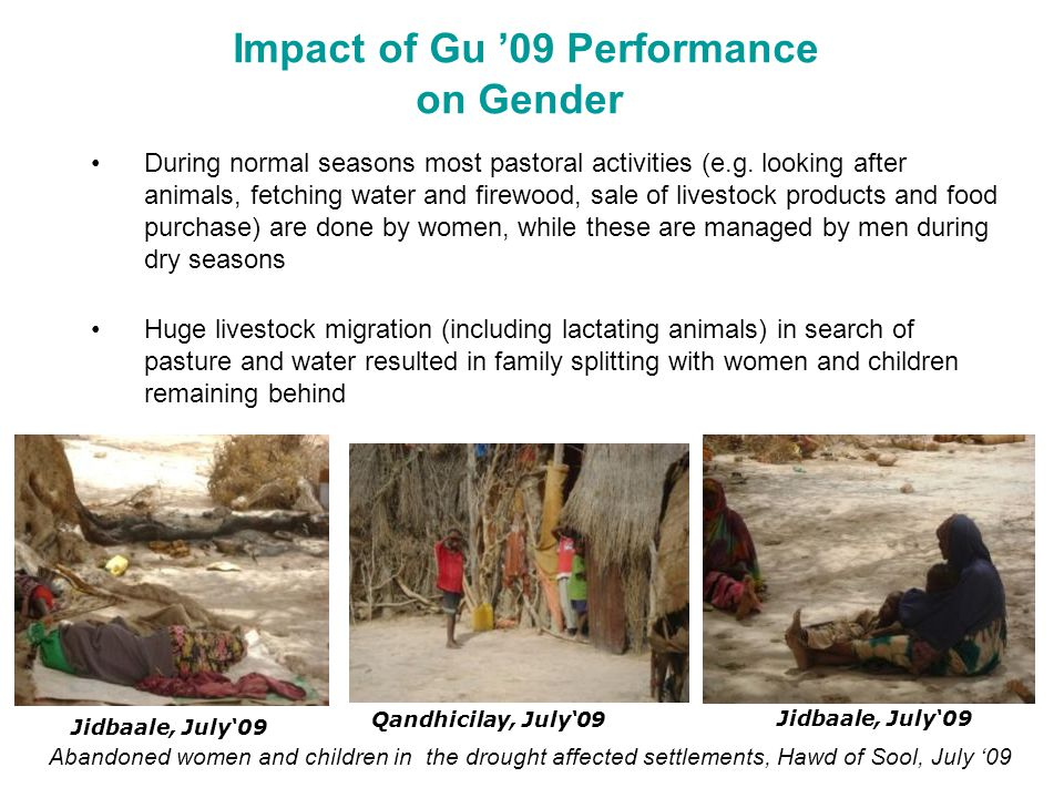 Impact of Gu '09 Performance on Gender During normal seasons most pastoral activities (e.g. looking after animals, fetching water and firewood, sale o
