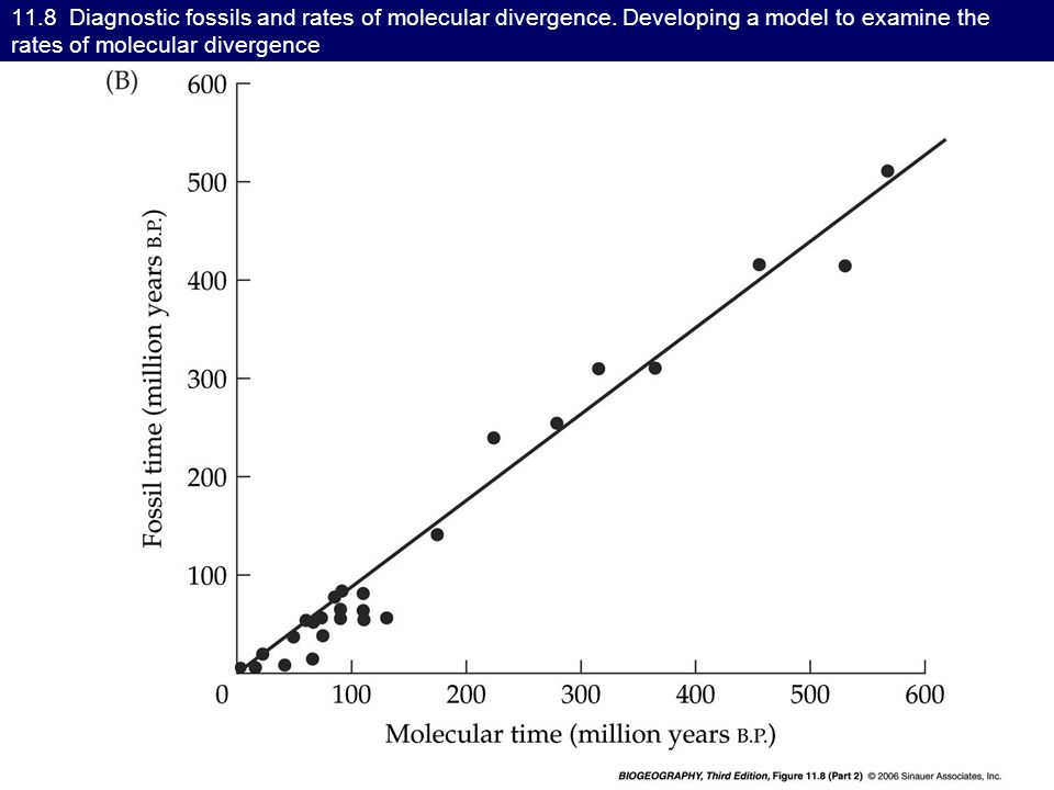 11.8 Diagnostic fossils and rates of molecular divergence.