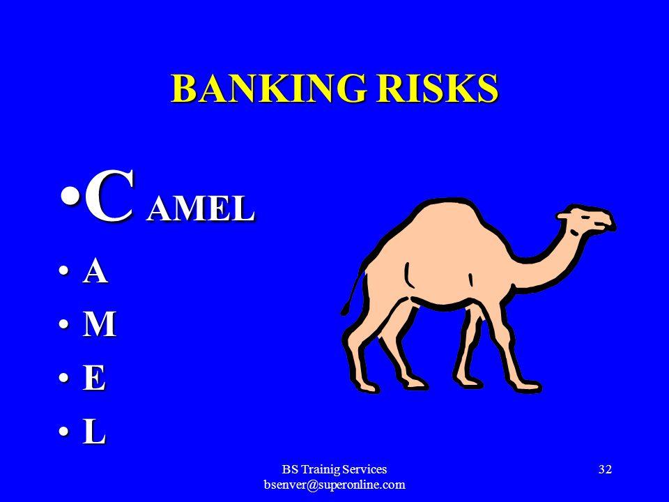 BS Trainig Services bsenver@superonline.com 31 BANKING RISKS
